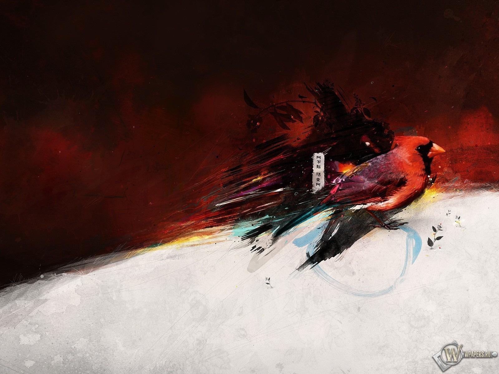 Bird draw 1600x1200