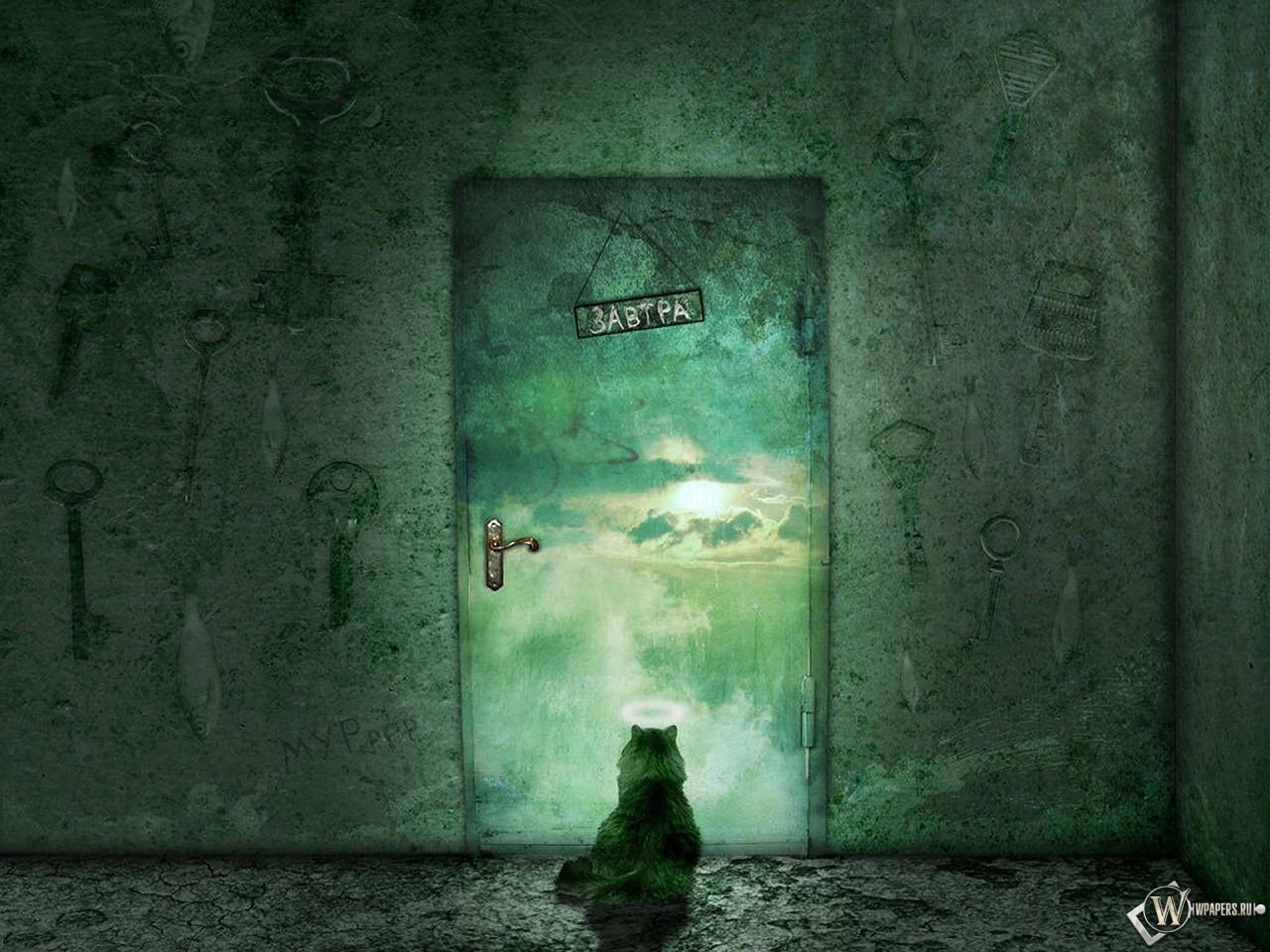 Кот у закрытой двери 1280x960