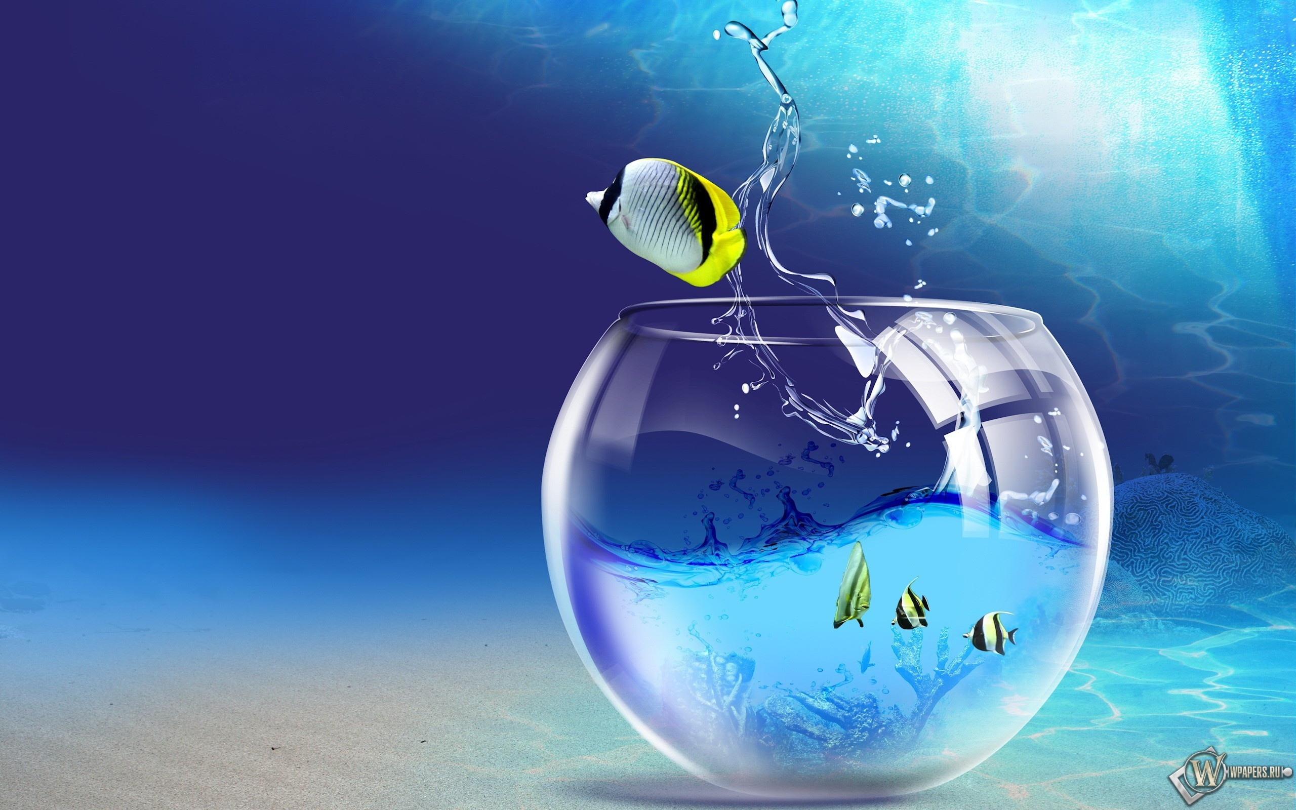 Бирюзовый аквариум 2560x1600