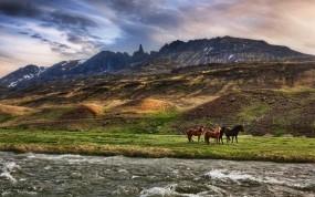 Обои Дикие лошади: Облака, Река, Горы, Лошади, Лошади