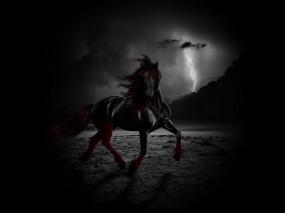 Обои Черный конь ночью: Свобода, Ночь, Ветер, Молния, Конь, Лошади