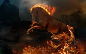 Обои Огненый конь: Огонь, Пламя, Лошадь, Конь, Лошади