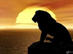 Обои Лев на закате: Закат, Лев, Львы