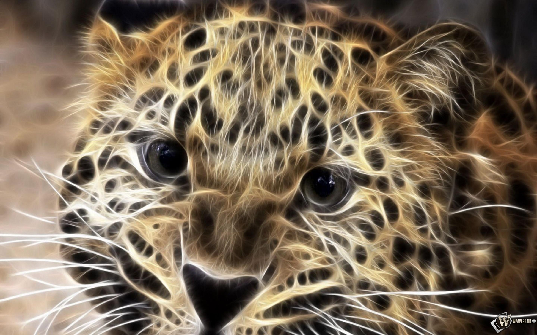 Леопард в обработке 2880x1800
