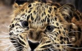 Обои Леопард в обработке: Зверь, Леопард, Обработка, Леопарды