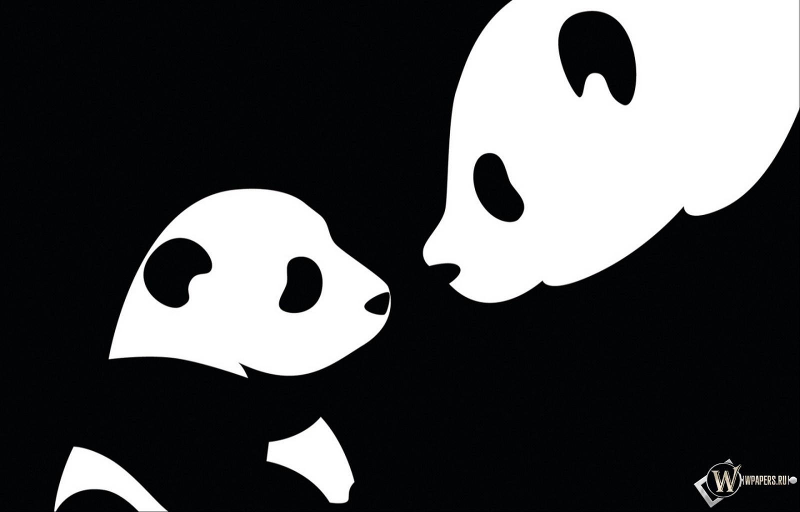 Две панды 1600x1024