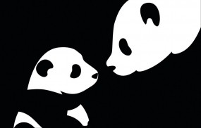Обои Две панды: Панда, Ребёнок, Черно-белое, Мама, Панды