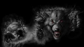 Обои Волки: Волки, Звери, Horror, Волки