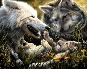 Обои Волки с волчонком: Волки, Семья, Волчонок, Волки