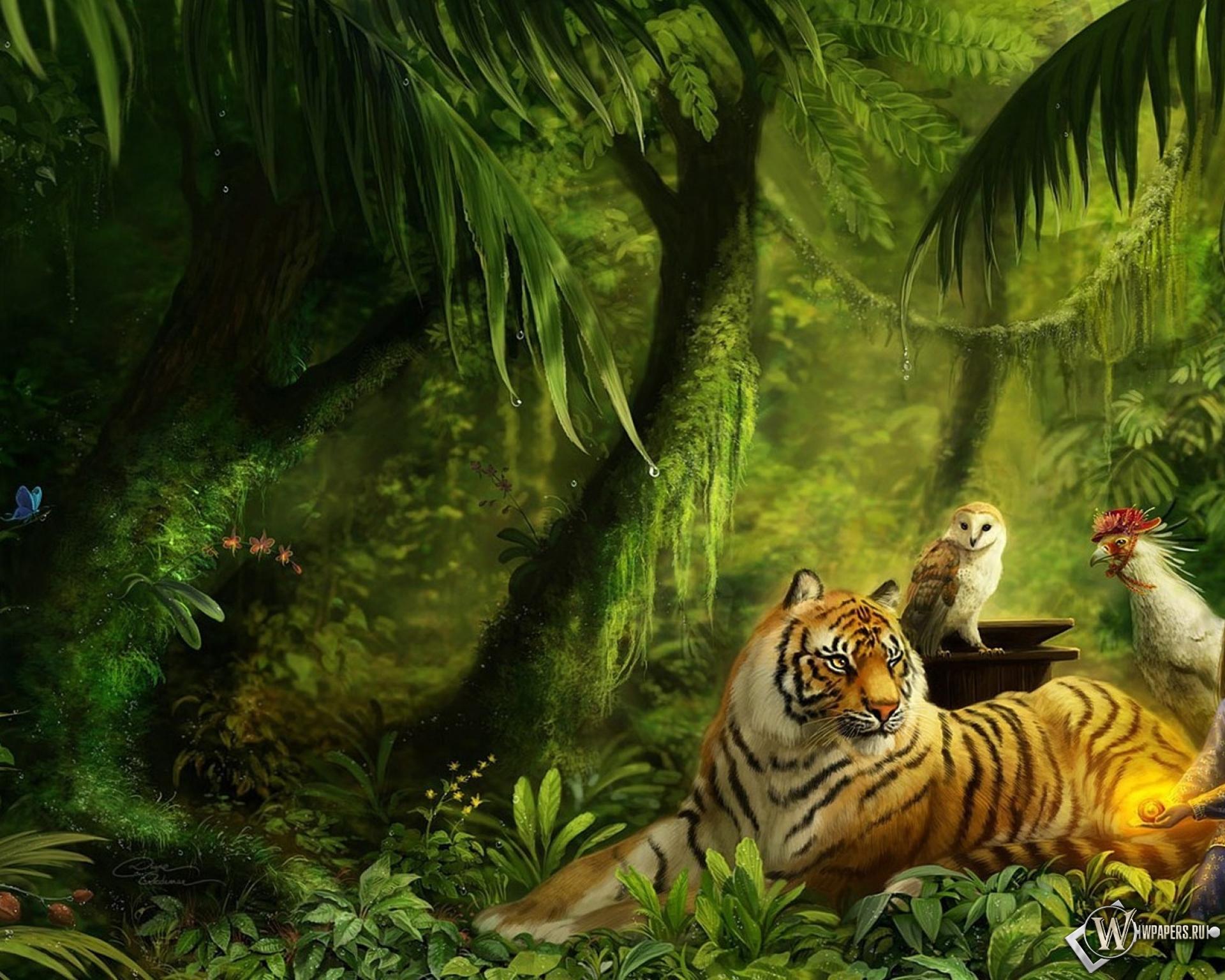 Животные в лесу 1920x1536