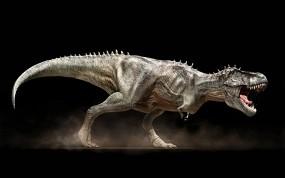 Обои Т-рекс: Хищник, Динозавр, Ящер, Прочие животные