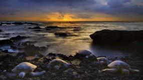 Обои Черепахи на берегу: Океан, Берег, Небо, Горизонт, Черепахи, Прочие животные