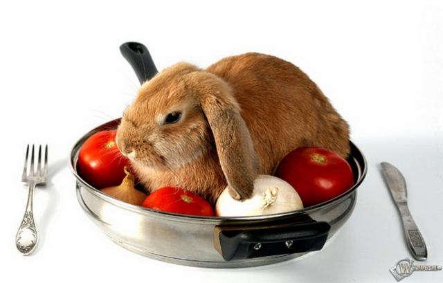 Кролик на сковороде