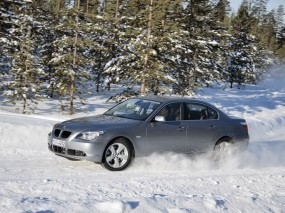 BMW 5 Series (2004)