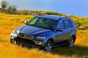 Обои BMW X5 (2007): Внедорожник, Трава, BMW X5, BMW