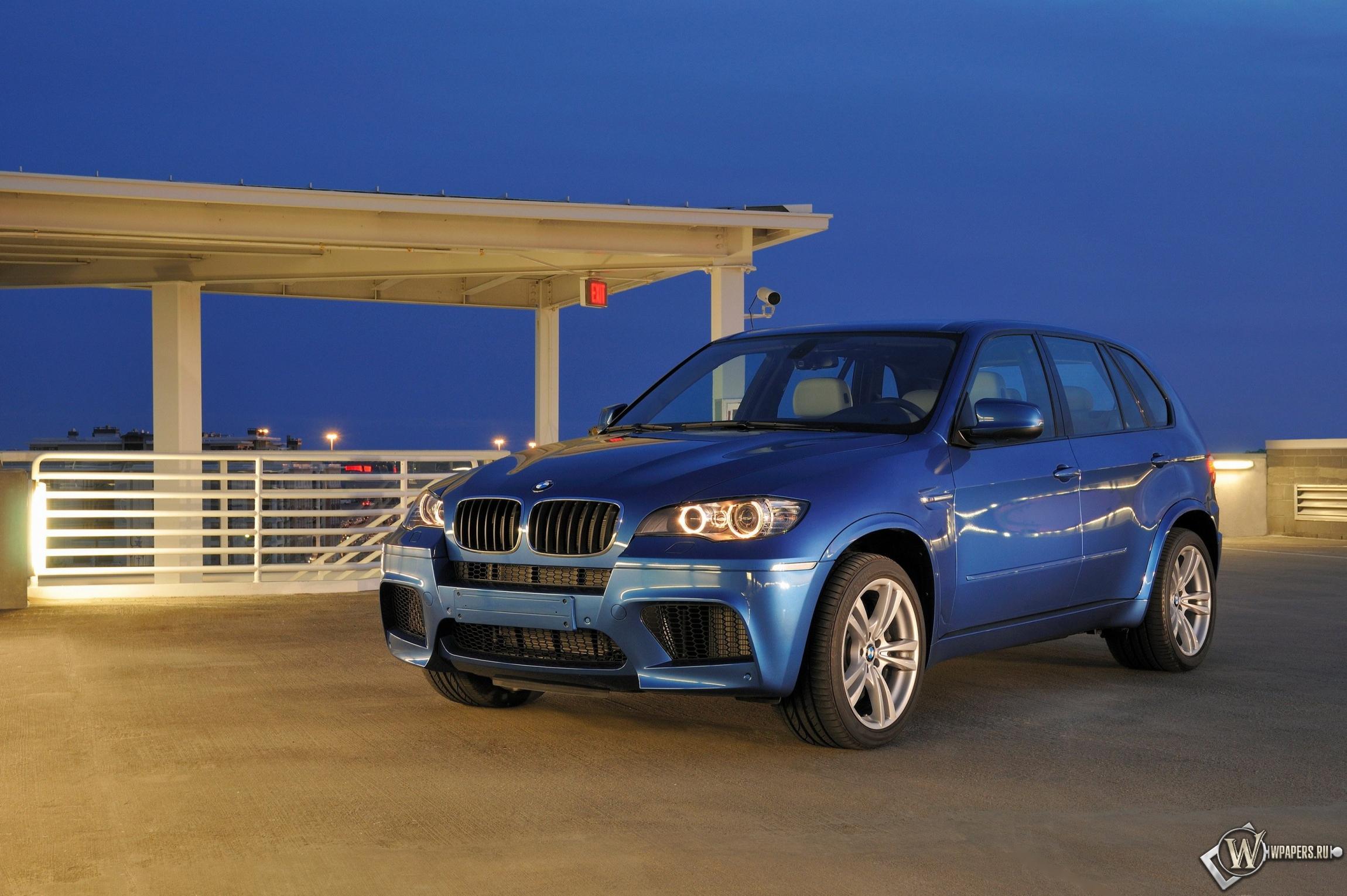 BMW - X5 M (2010) 2300x1530