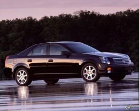 Обои Cadillac CTS: Кадиллак, Авто, Лес, Cadillac, Cadillac CTS, Кадиллак КТС, Cadillac