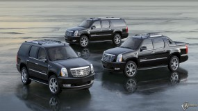 2007 Cadillac Escalade Family