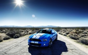 Обои Ford Mustang Shelby: Ford Mustang Shelby, Ford