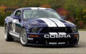 Обои Мустанг кобра: Ford Mustang Shelby, Ford