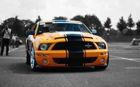 Обои Ford Mustang Shelby GT500 Super Snake: Ford Mustang Shelby, Ford
