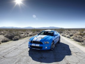 Обои 2010 Ford Shelby GT500: Ford Mustang Shelby, Ford
