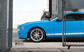 Обои Мустанг: Ford Mustang Shelby, Ford
