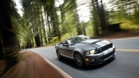 Обои Ford Shelby Mustang GT 500: Кабриолет, Ford Mustang Shelby, Ford