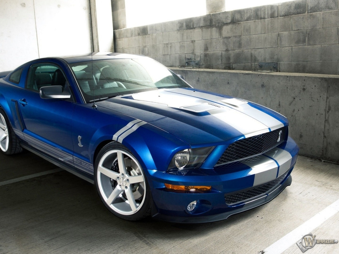 Ford Shelby GT 500 1152x864
