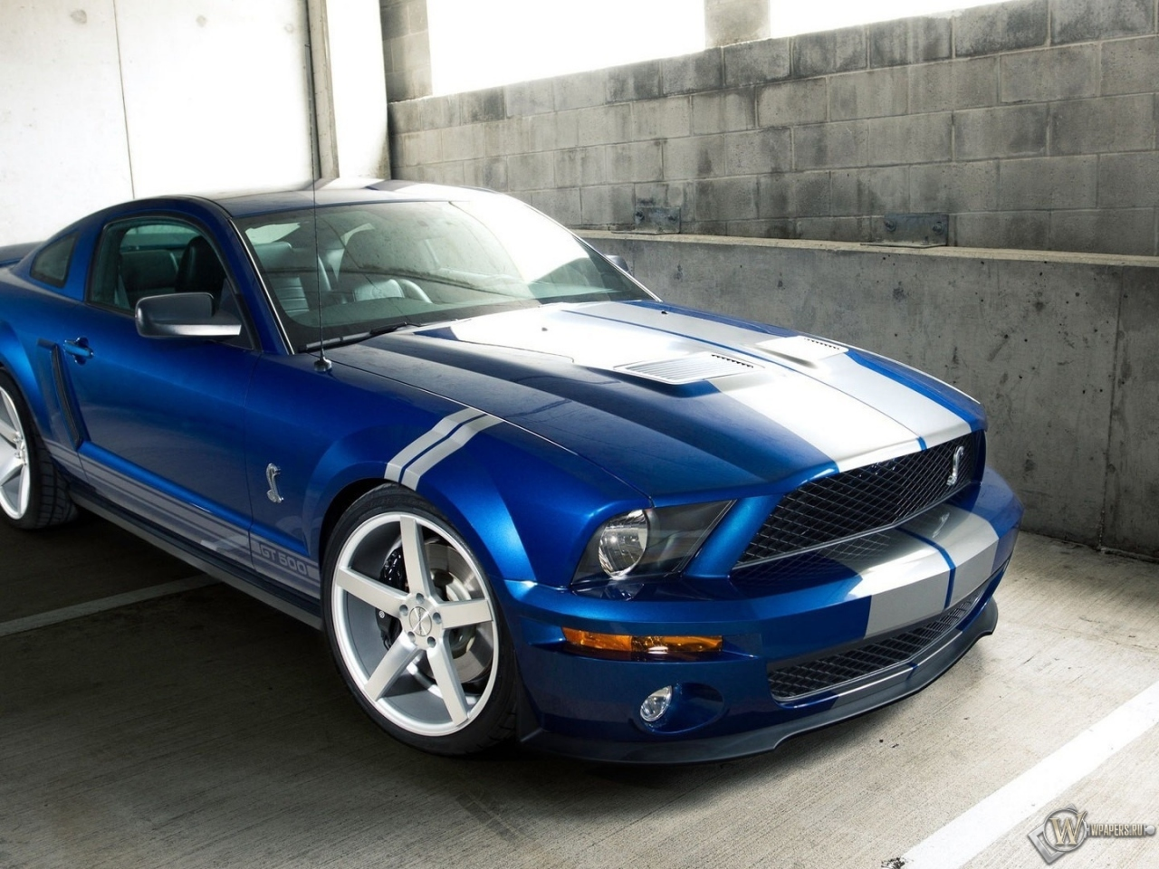Ford Shelby GT 500 1280x960