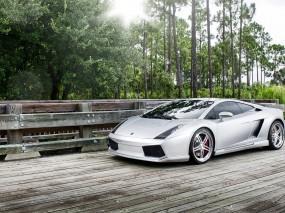Обои Lamborghini Gallardo на фоне природы: Природа, Lamborghini Gallardo, Lamborghini