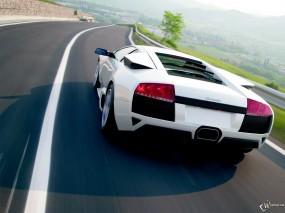 Обои Белый Lamborghini: Lamborghini Murcielago, Lamborghini