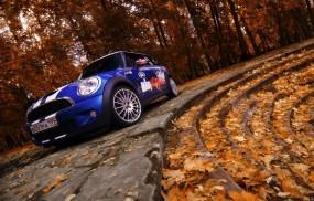 Обои Mini cooper: Деревья, Осень, Листья, Mini Cooper, Mini