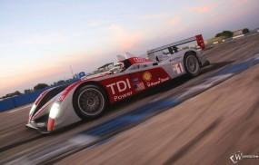 Обои Audi R10 TDI: Audi R10, Спортивные автомобили