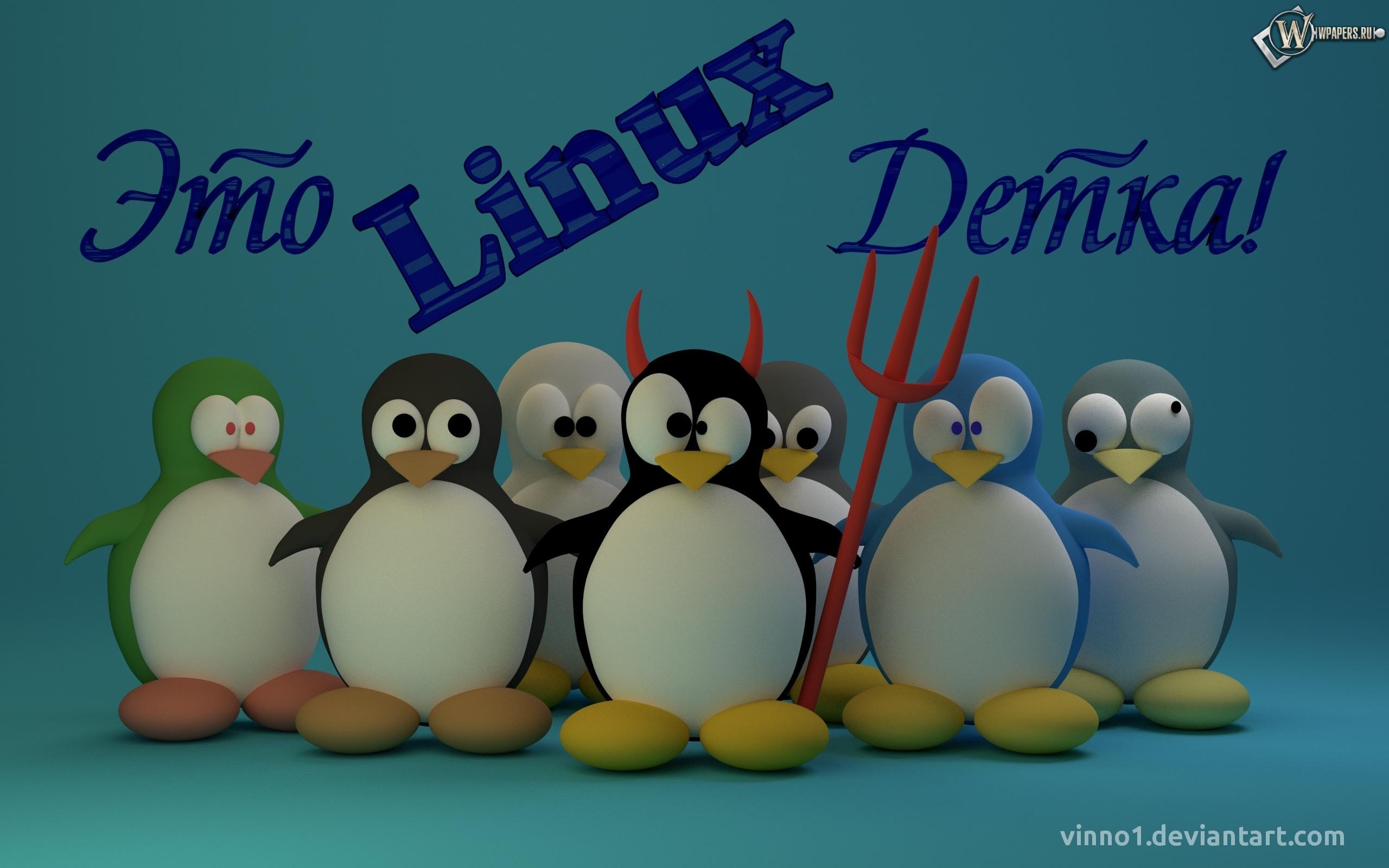 это линукс детка 2560x1600