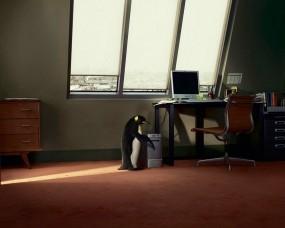 Обои Пингвин в офисе: Окно, Linux, Компьютер, Пингвин, Стол, Unix
