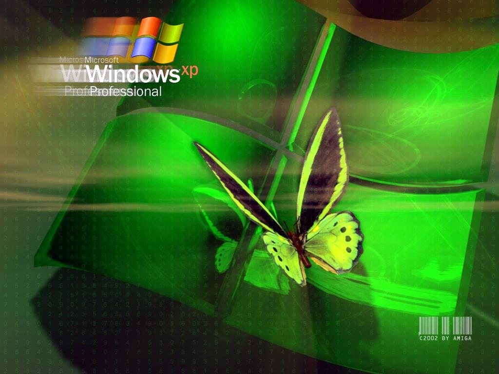 XP бабочка 1024x768