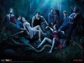 Обои Настоящая кровь: Лес, Вампир, Настоящая кровь, true blood, Фильмы