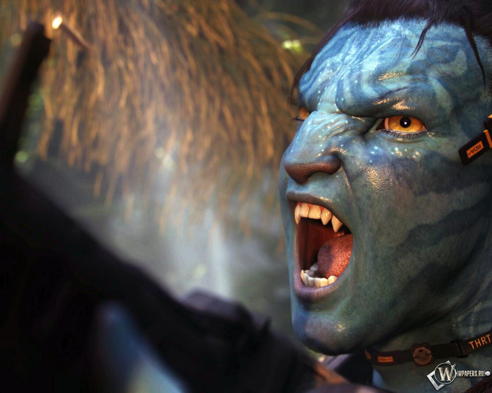 Джейк (Avatar) 1600x1280