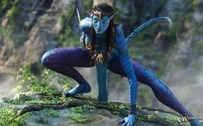 Обои Avatar: Природа, Фэнтези, Нави, 3D фильм, Avatar