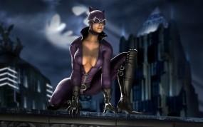 Обои Женщина-кошка: Ночь, Кошка, Бэтмен, Герой, Мультфильмы
