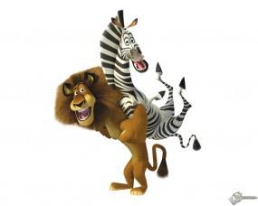 Обои Алекс и Марти: Мадагаскар, Мультфильмы