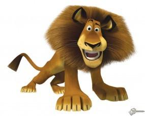 Обои Лев из мадагаскара: Лев, Мадагаскар, Мультфильмы