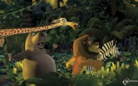 Обои Мадагаскарские джунгли: Мадагаскар, Мультфильмы