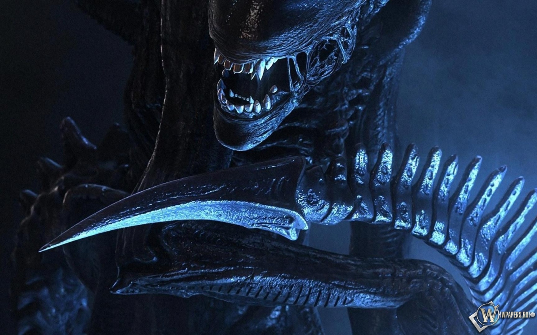 Торрент трекер  скачать игры фильмы сериалы софт