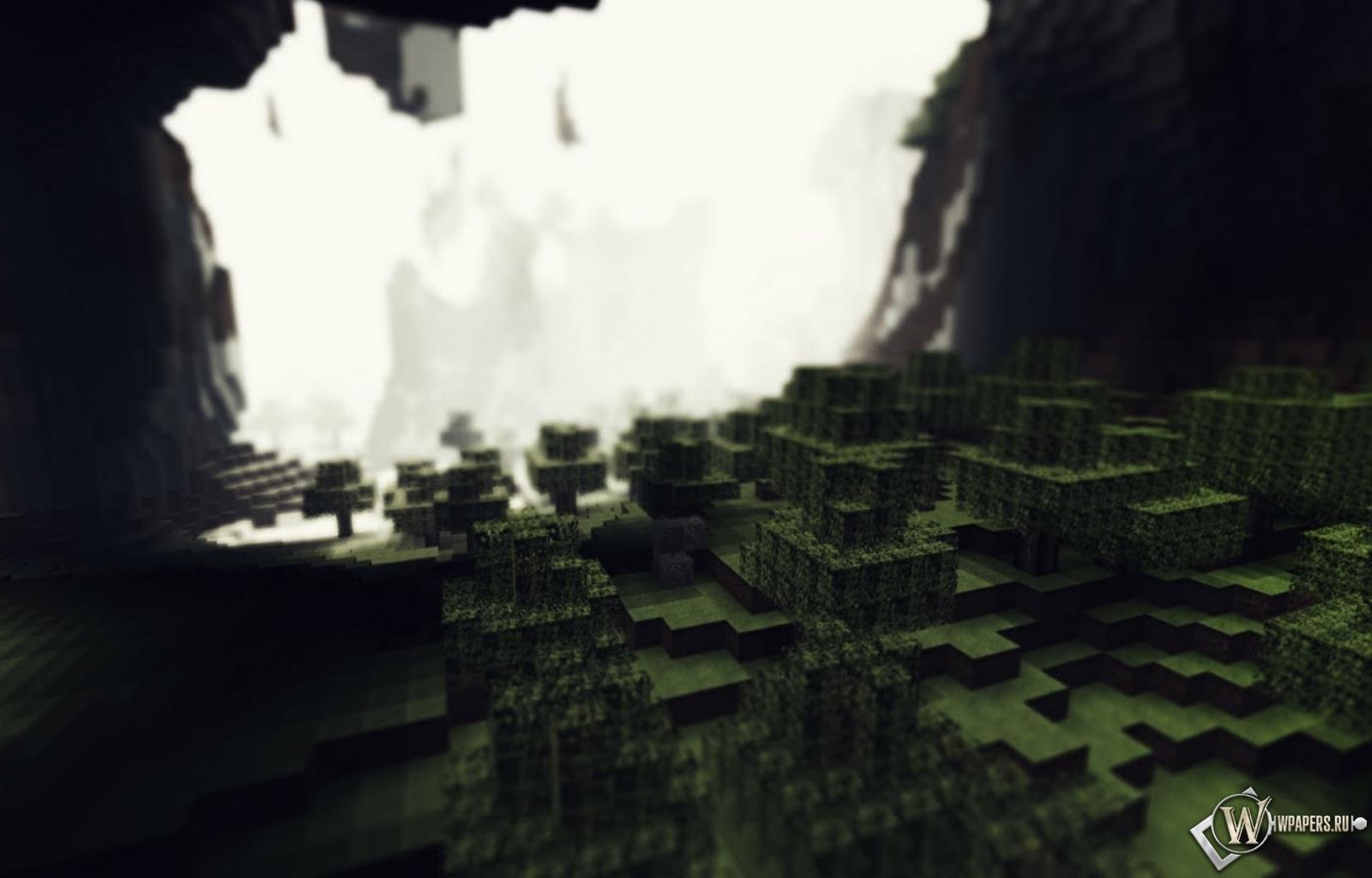 Лес в пещере Minecraft 1600x1024