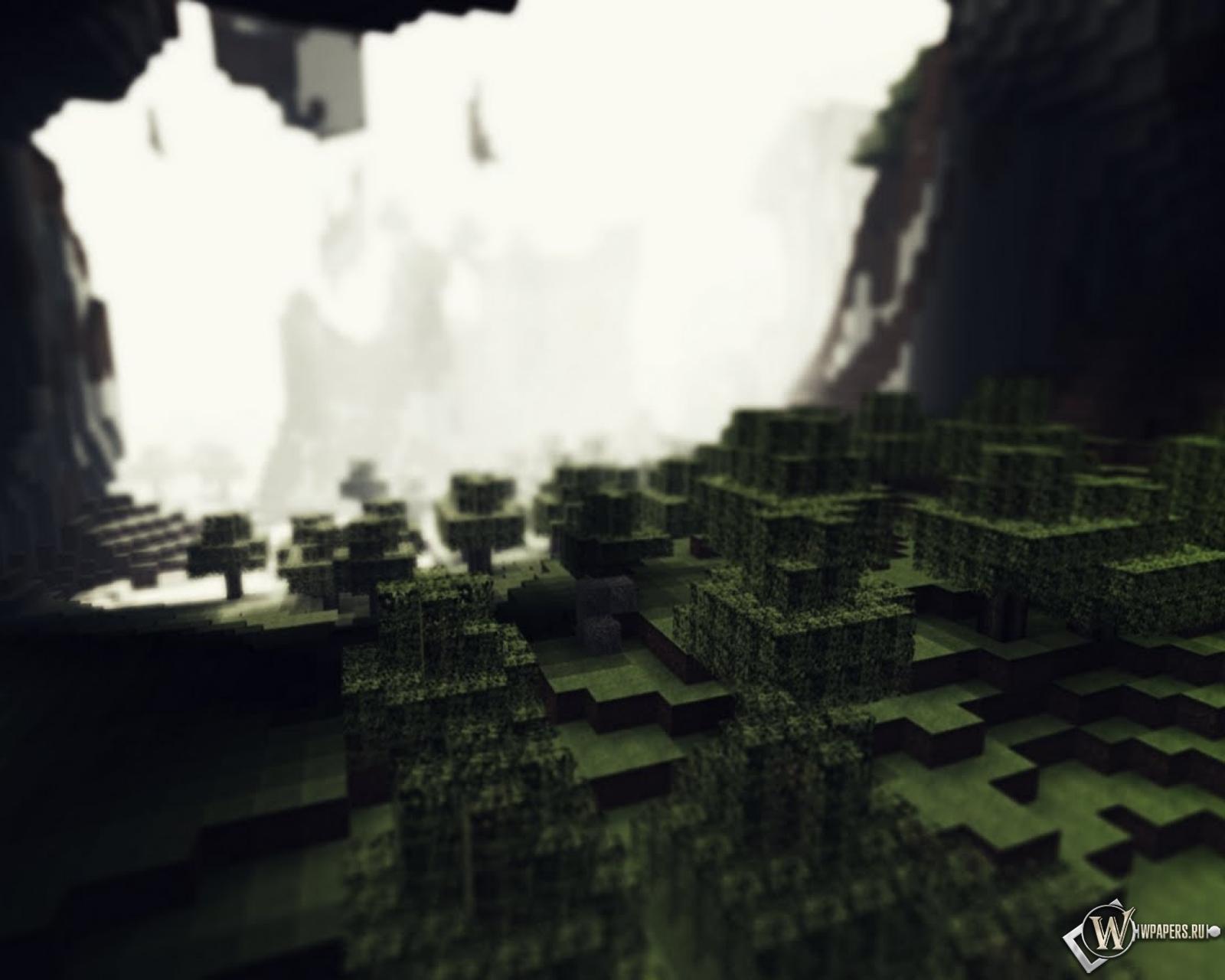 Лес в пещере Minecraft 1600x1280