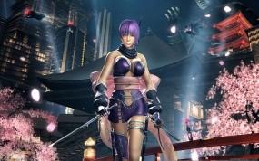 Обои Ninja Gaiden: Девушка, Ninja Gaiden, Самурай, Девушки из игр