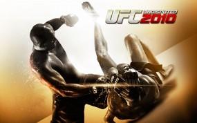 Обои UFC 2010 бои без правил: UFC, Бои, Другие игры