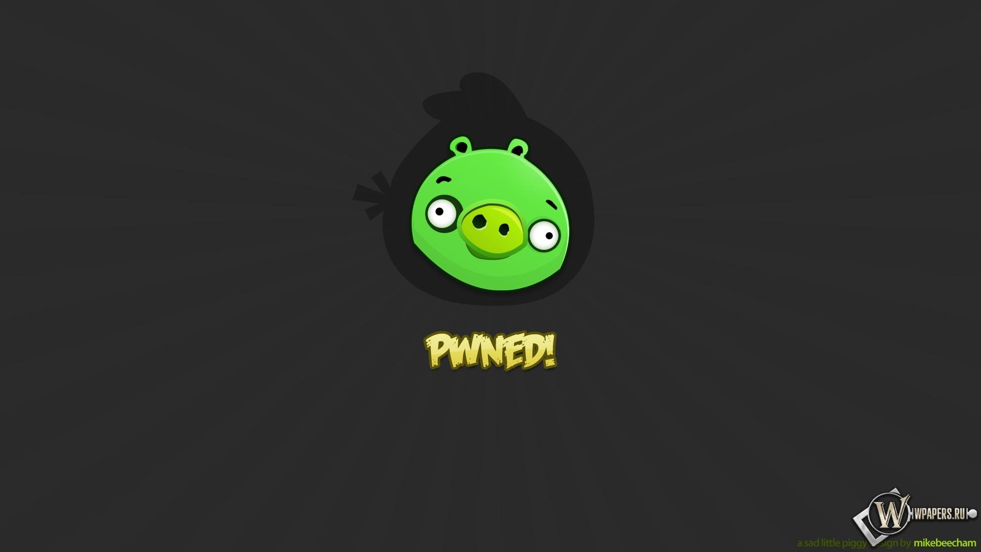 Angry Birds 1920x1080
